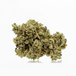 Original Glue (Hybrid) – Top Shelf
