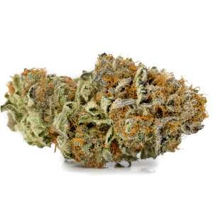 Platinum OG (Hybrid) – PRIVATE RESERVE
