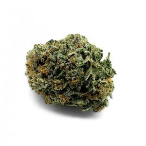 Snicklefritz OG (Hybrid) – Mid Shelf