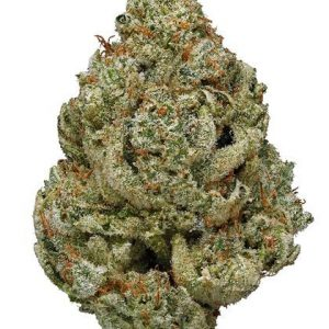 Ice Cream Cake (Indica) – Super EXOTIC