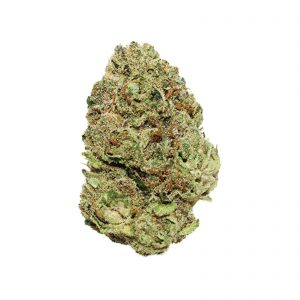 Wedding Cake (Hybrid) – EXOTIC