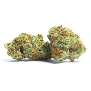 Papaya (Indica-Hybrid) – EXOTIC