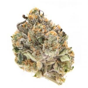 Purple Punch (Indica) – EXOTIC